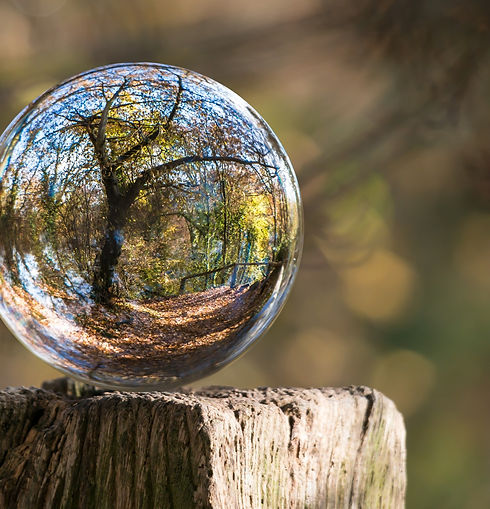 art-ball-blur-235615_edited_edited.jpg