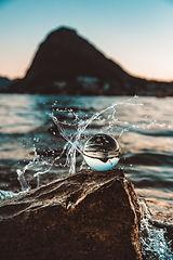blurred-background-close-up-daylight-203