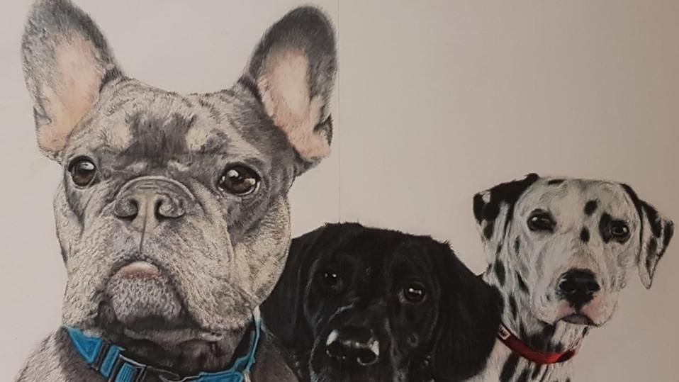 Holly Davies Art