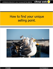 How to find your USP.PNG
