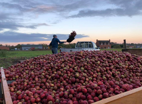 Watch the Peopleton Press #craftcider inspired video...