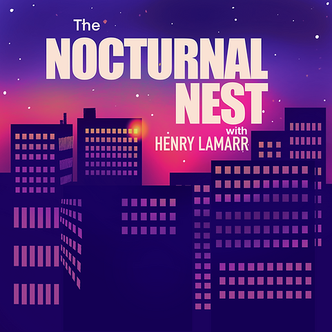 The Notcturnal Nest.png