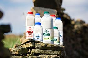 Plastic-Bottle-Group-6749.jpg