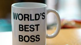 The Wonderful Burden of Veterinary Leadership