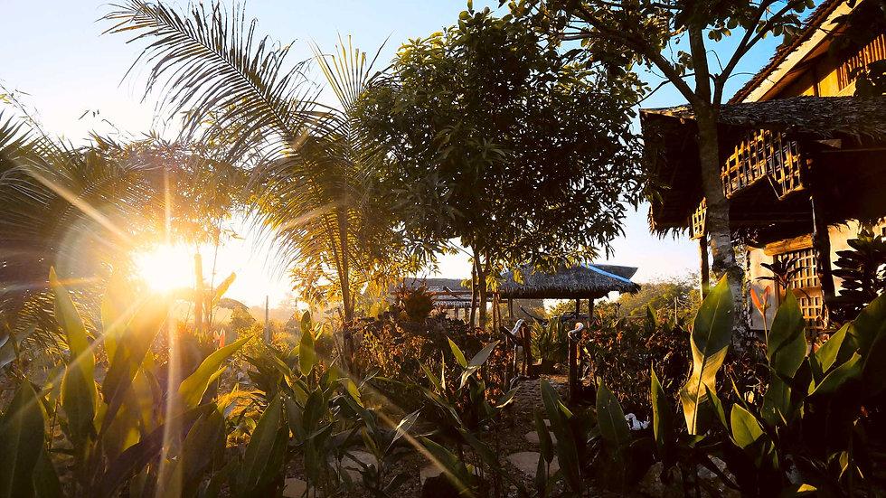 Himulak Coron ! Vous dormez dans des Blay Kubo offrant vérandas, jardins tropicaux, idéale pour observer le lever de soleil et les nuits étoilées.