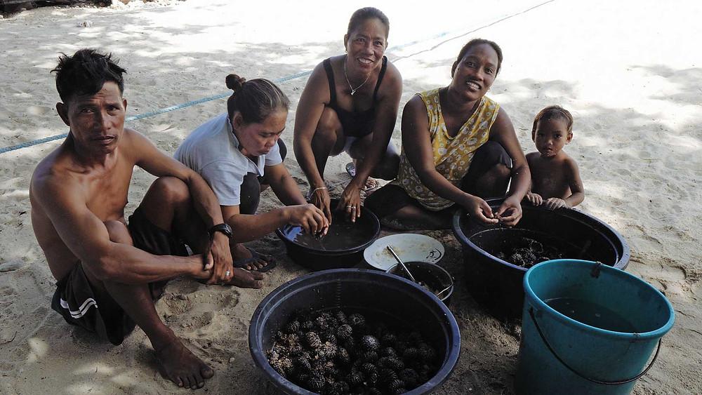 Un repas sur la Langub Beach à Malapascua, swaki ou oursin de mer