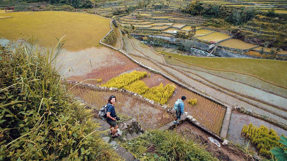 Rando : Depuis la route d'Hungduan, un itinéraire buissonnier vous emmène à la rivière d'Hapao
