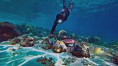 Busuanga, Les amoureux de la plongée et du snorkeling seront au paradis