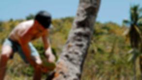 Photo à propos : Combinez aventure et authenticité d'île en île à Palawan