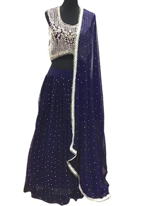 Pretty Blue Lehanga Choli