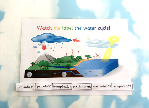 Water cycle learning sheet