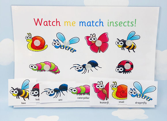 Matching Insects Learning Sheet