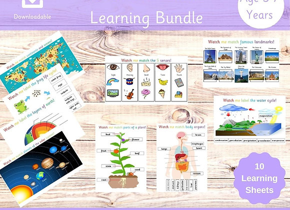 Science and Nature Learning Bundle - Busy Book - Key Stage 1 - Science Lessons