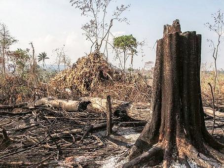 O que São Áreas Degradadas