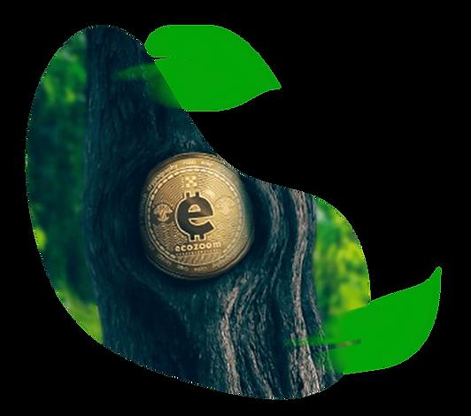 Criptomoeda Ecozoom