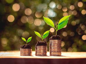 O que São Commodities Ambientais?