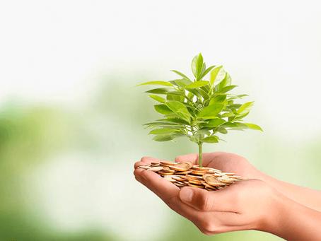 O que é Crédito de Carbono?