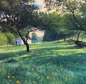 Morning in Shore Park, Bay Ridge, NY