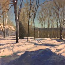 BRIGHT SNOWY DAY IN NARROWSBURG NY