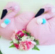 Swans love sleepover parties too!_._._#s