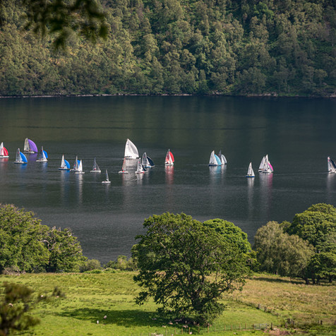 A 'Clump' of Yachts