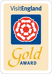 2020-Gold-Award-(2).png