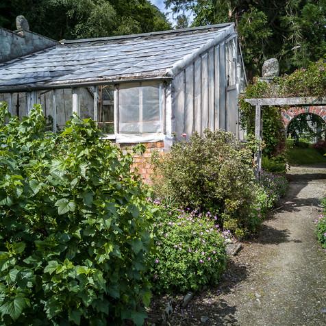 Mr McGregor's garden
