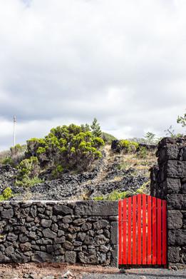 19 . Ilha do Pico