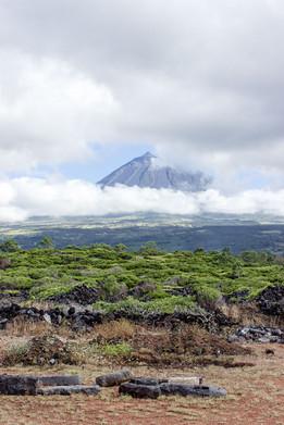 18 . Ilha do Pico