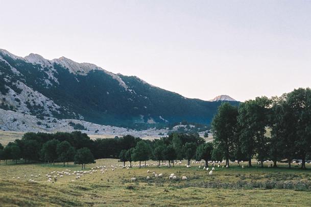 20 . Parque Natural de Aizkorri-Aratz