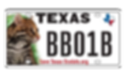 licenseplate.png