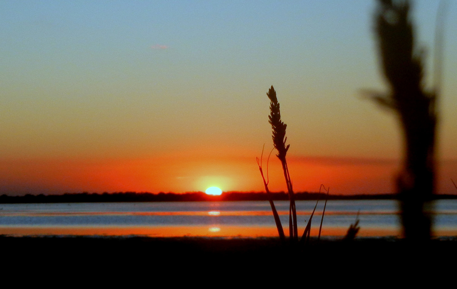 Laguna Atascosa Sunset 2011.. by Sarah N