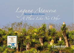 image of book cover of Laguna Atascosa A Place Like No Other