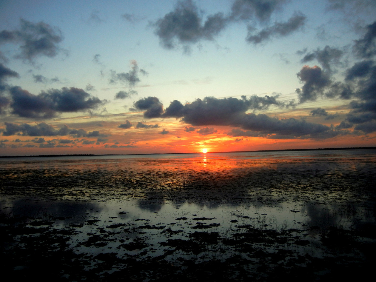 Sunset over Laguna Atascosa 2011 by Sara