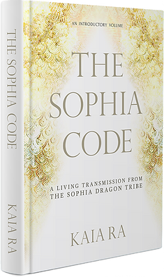 sophia-code-book_cropped.png