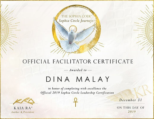 Official SC Certificate - DinaMalay_Smal