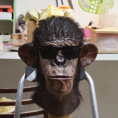 chimp 1.jpg