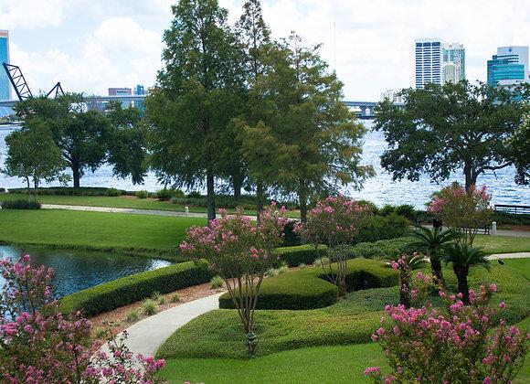 Jacksonville City Park