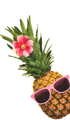 bgpineapple-removebg-preview (1).png