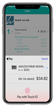 apple pay screen-01.png