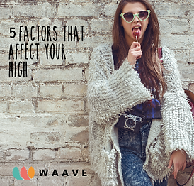 WAAVE on IG 5 factors that affect your h