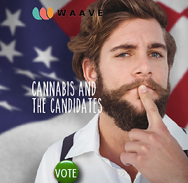 waave app democrats and weed vote.png