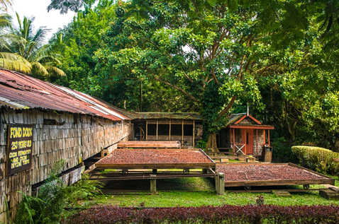 Fond Doux Plantation and Resort