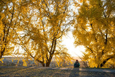 a women sitting alone at sunset at Libbie Hill in Richmond, VA