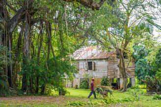 Balenbouche-Estate-St-Lucia-2-2.jpg
