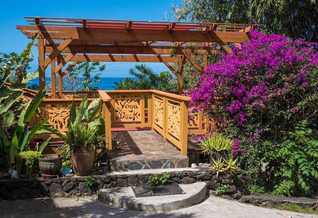 Hawaii Surf Cabin Yoga