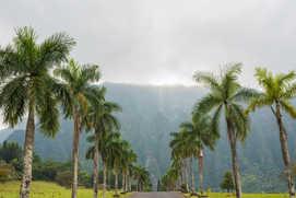 Byodu-In-Temple-Oahu-Hawaii-71.jpg