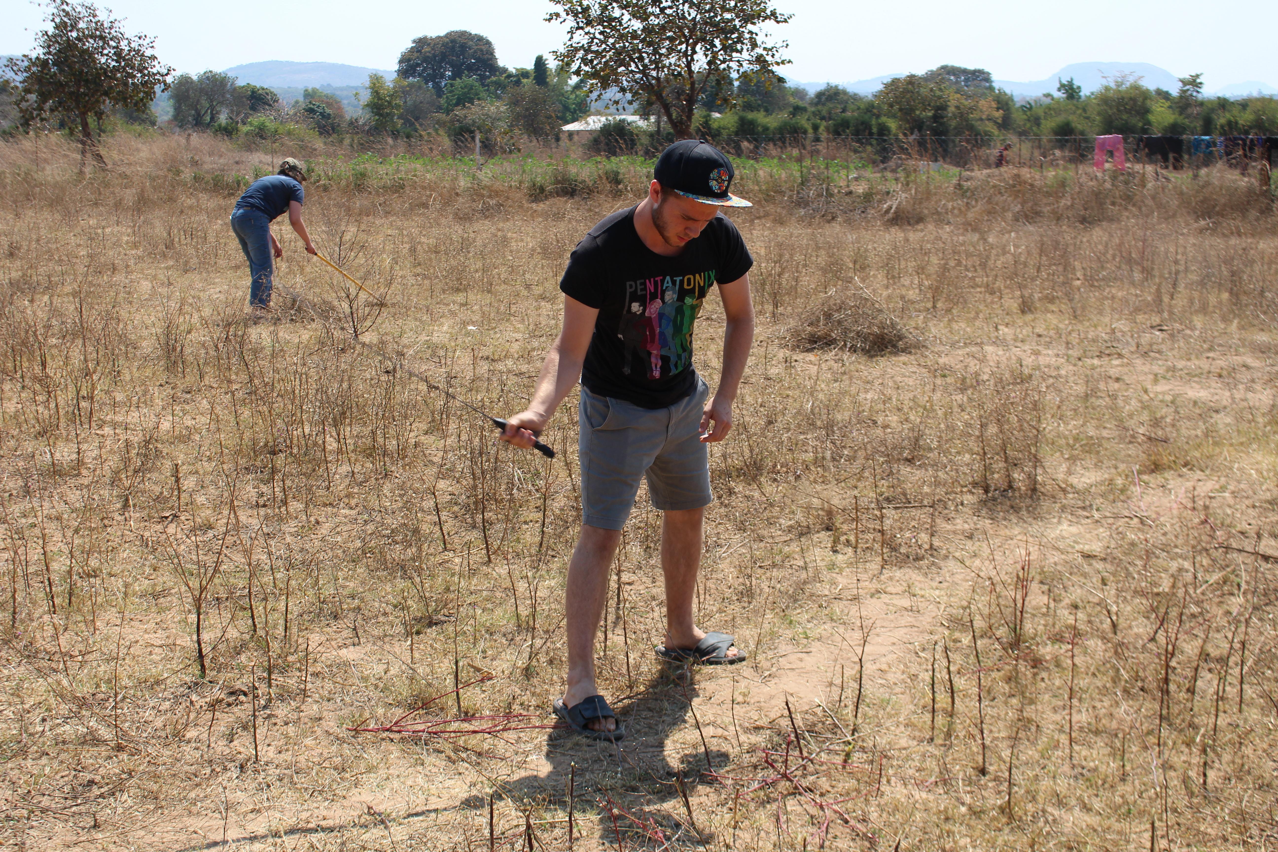 A team work day - slashing grass