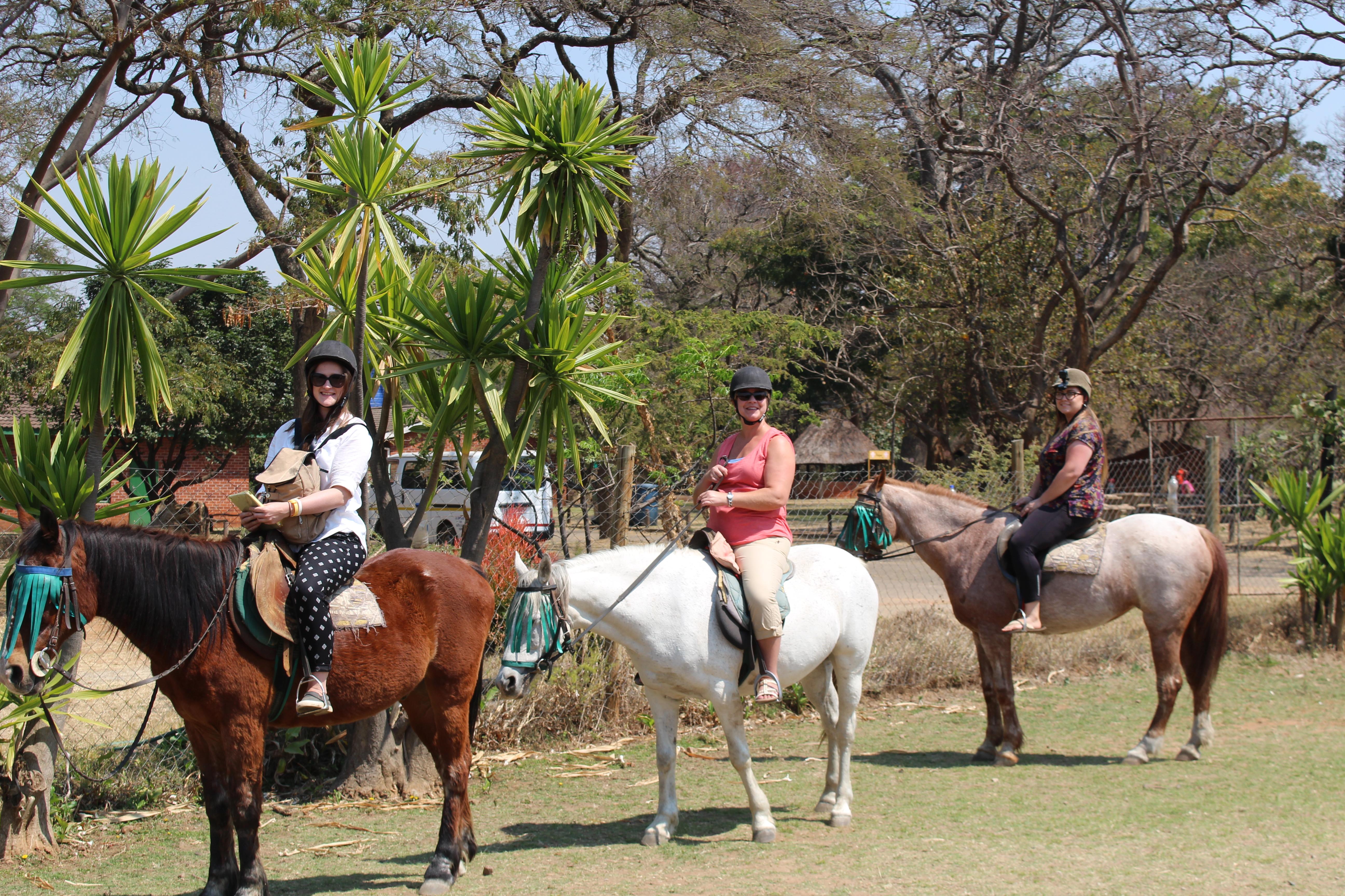 Horseback safari ride