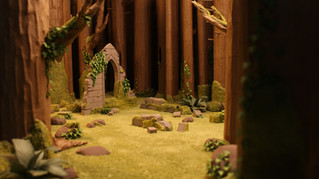 Forest Experiments